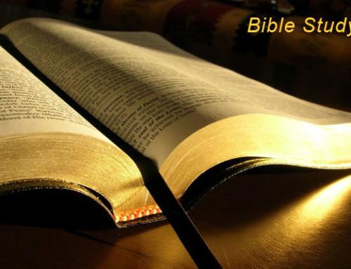 Bible Study & Family Dinner